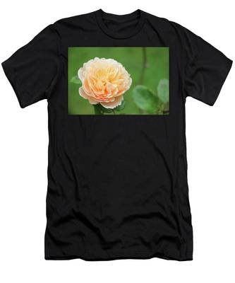 Yellow Rose In December Men's T-Shirt (Athletic Fit)