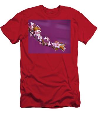 Cherry Blossoms And Plum Door Men's T-Shirt (Athletic Fit)