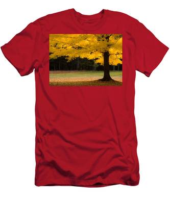 Men's T-Shirt (Athletic Fit) featuring the photograph Tree Canopy Glowing In The Morning Sun by Jeff Folger