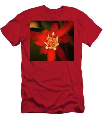 Crimson Beauty Men's T-Shirt (Athletic Fit)