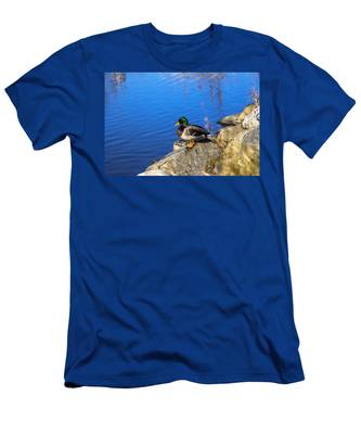 Mallard Looking Over His Domain Men's T-Shirt (Athletic Fit)