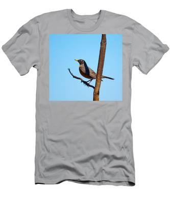 Robin Taking A Break Men's T-Shirt (Athletic Fit)