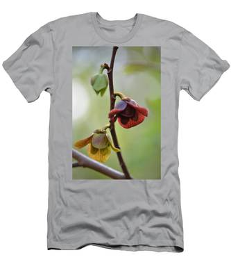 Paw-paw Flowers Men's T-Shirt (Athletic Fit)