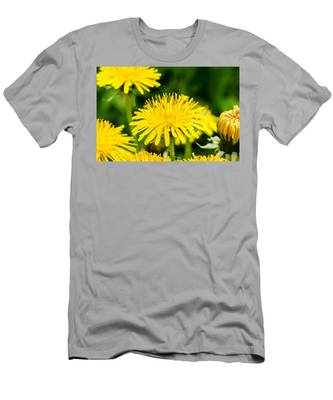 Men's T-Shirt (Athletic Fit) featuring the photograph Yellow Dandelions by Michael Goyberg