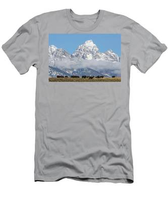 Bison In The Tetons Men's T-Shirt (Athletic Fit)