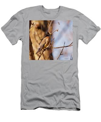 Cedar Waxwing In Autumn Men's T-Shirt (Athletic Fit)