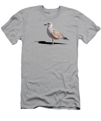 Daytime T-Shirts