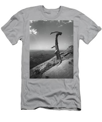Ruins Of A Tree At Table Rock Trail Overlook Two Men's T-Shirt (Athletic Fit)