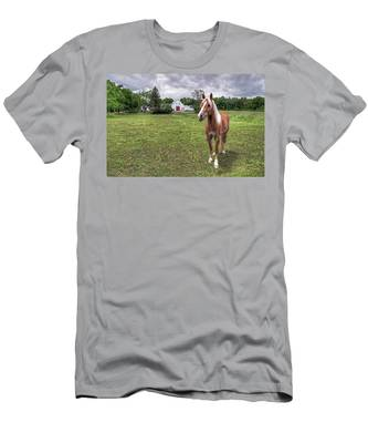 Horse In Pasture Men's T-Shirt (Athletic Fit)