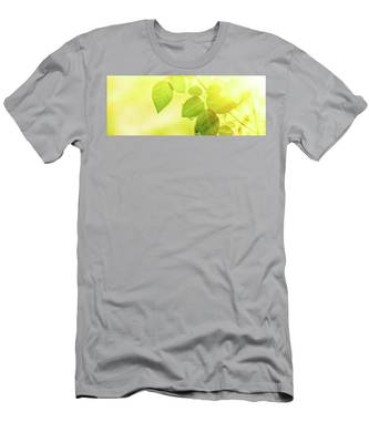 Summer Sun IIi Men's T-Shirt (Athletic Fit) by Anne Leven