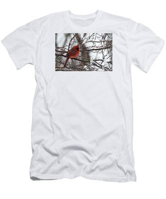 Men's T-Shirt (Athletic Fit) featuring the photograph Northern Red Cardinal In Winter by Jeff Folger