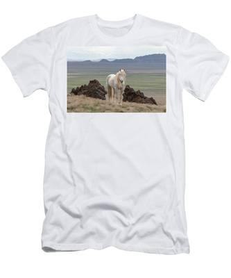 Desert Home Men's T-Shirt (Athletic Fit)