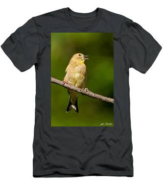 American Goldfinch Singing Men's T-Shirt (Athletic Fit)