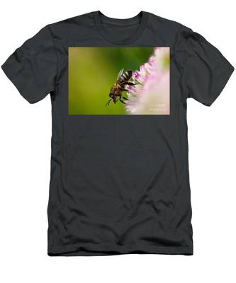 Bee Sitting On A Flower Men's T-Shirt (Athletic Fit)