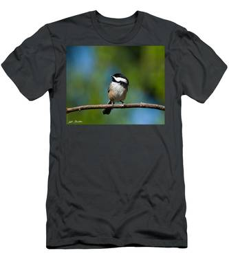 Black Capped Chickadee Perched On A Branch Men's T-Shirt (Athletic Fit)