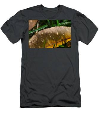 Fall Morning Leaf And Dew Men's T-Shirt (Athletic Fit)