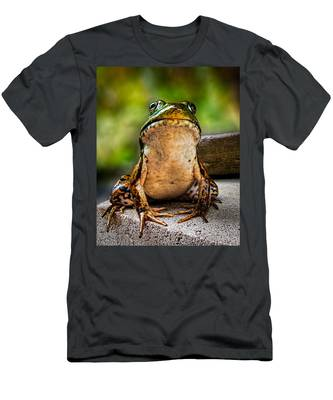 Frog Prince Or So He Thinks Men's T-Shirt (Athletic Fit)