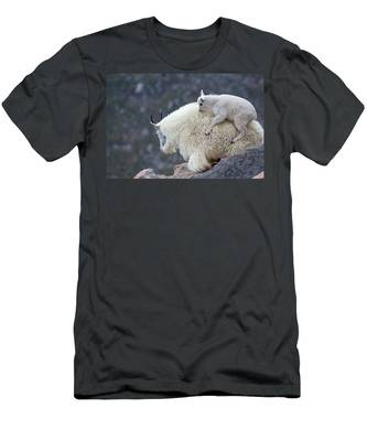 Piggyback Ride Men's T-Shirt (Athletic Fit)