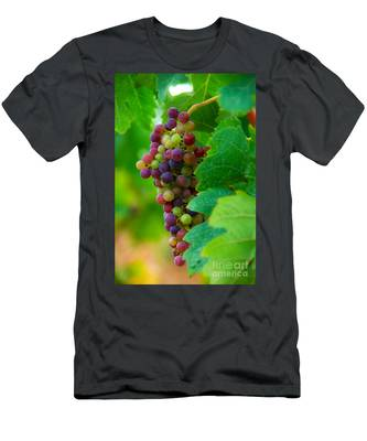 Red Grapes Men's T-Shirt (Athletic Fit)