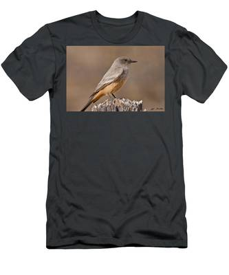 Say's Phoebe On A Fence Post Men's T-Shirt (Athletic Fit)