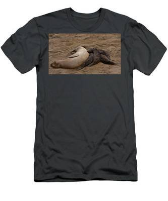 Seal And Pups Men's T-Shirt (Athletic Fit)