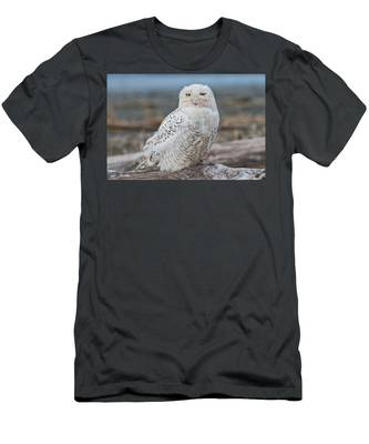 Snowy Owl Watching From A Driftwood Perch Men's T-Shirt (Athletic Fit)