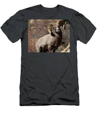 The High And Mighty Men's T-Shirt (Athletic Fit)