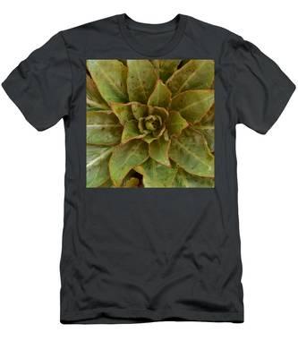 Leaf Star Men's T-Shirt (Athletic Fit)