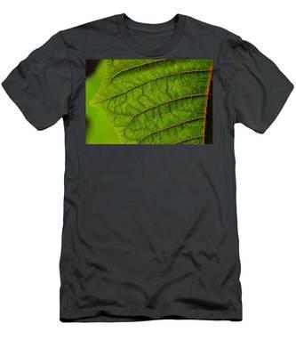 Poinsettia Leaf I Men's T-Shirt (Athletic Fit)