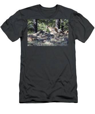 Pronghorn Antelope Fawn Men's T-Shirt (Athletic Fit)