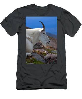 The Gathering Storm Men's T-Shirt (Athletic Fit)