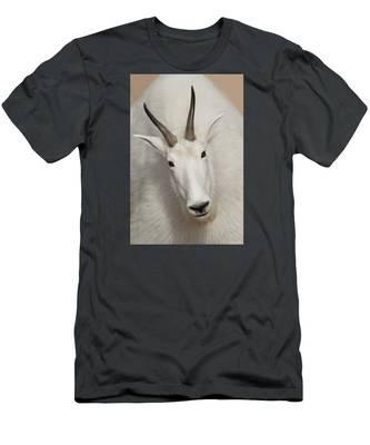 Snow White Men's T-Shirt (Athletic Fit)