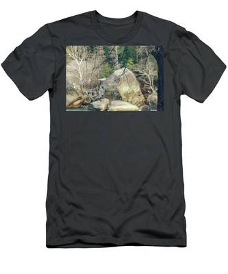 Across From Eagle Falls Men's T-Shirt (Athletic Fit)