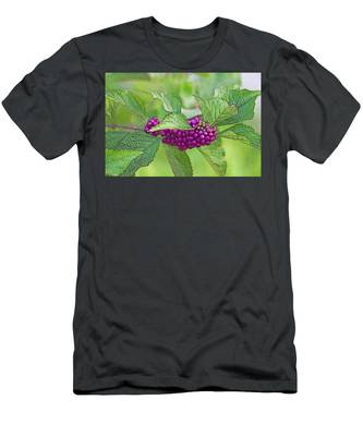 American Beautyberry Men's T-Shirt (Athletic Fit)