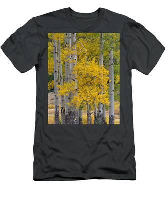 Aspen Bouquet Men's T-Shirt (Athletic Fit)