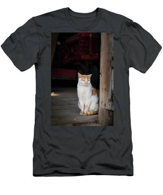 Men's T-Shirt (Athletic Fit) featuring the photograph Barn Cat And Tractor by Dennis Dame