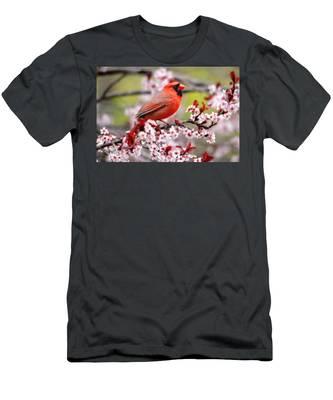 Beautiful Northern Cardinal Men's T-Shirt (Athletic Fit)