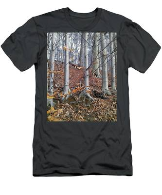 Beech Trees Men's T-Shirt (Athletic Fit)