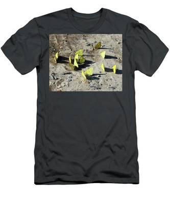 Butterflies Men's T-Shirt (Athletic Fit)
