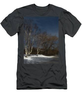 Country Roadside Birch Men's T-Shirt (Athletic Fit)