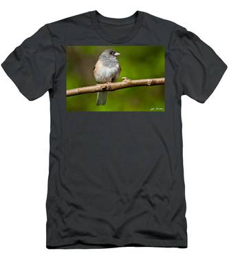 Dark Eyed Junco Perched On A Branch Men's T-Shirt (Athletic Fit)