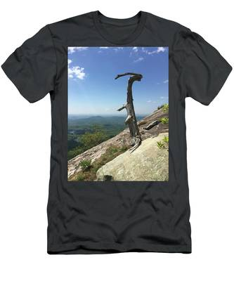 Decaying Tree At The Top Of Table Rock Trail South Carolina Men's T-Shirt (Athletic Fit)
