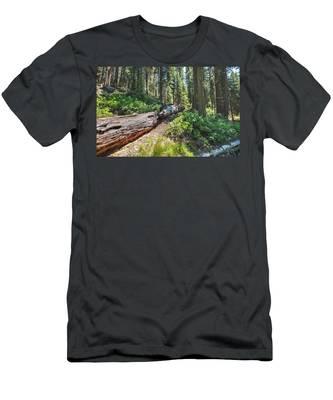 Fallen Tree- Men's T-Shirt (Athletic Fit)