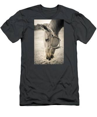 Horse Eating In A Pasture Men's T-Shirt (Athletic Fit)