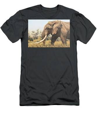 In The Footsteps Of Elders Men's T-Shirt (Athletic Fit)