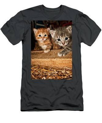 Kittens Men's T-Shirt (Athletic Fit)