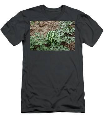 Ky Watermelon Men's T-Shirt (Athletic Fit)