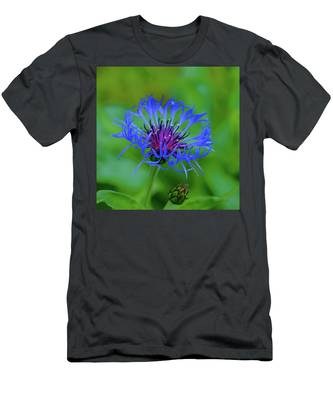Mountain Cornflower Men's T-Shirt (Athletic Fit)