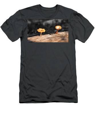 Mushrooms On A Branch Men's T-Shirt (Athletic Fit)