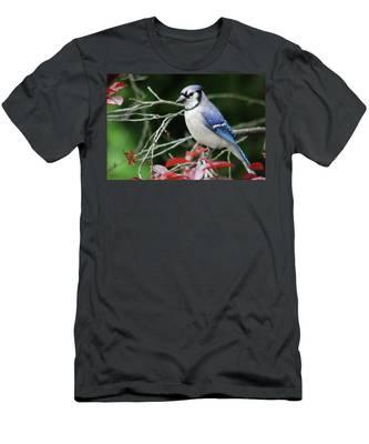 Pretty Blue Jay Men's T-Shirt (Athletic Fit)
